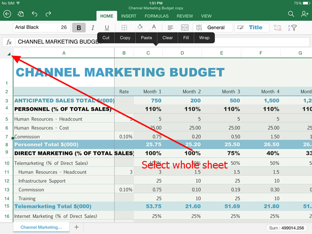 select whole sheet with one tap Guide for selecting data in Excel on iPad